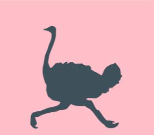 perfil_actitud_cronico_avestruz