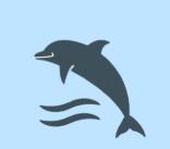 perfil_actitud_cronico_delfin