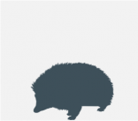 perfil_actitud_cronico_puercoespin